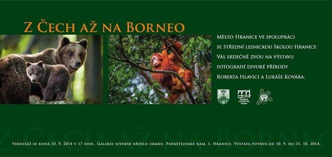 z_cech_az_na_borneo_660